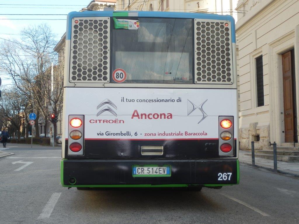 adesiva retrobus ancona