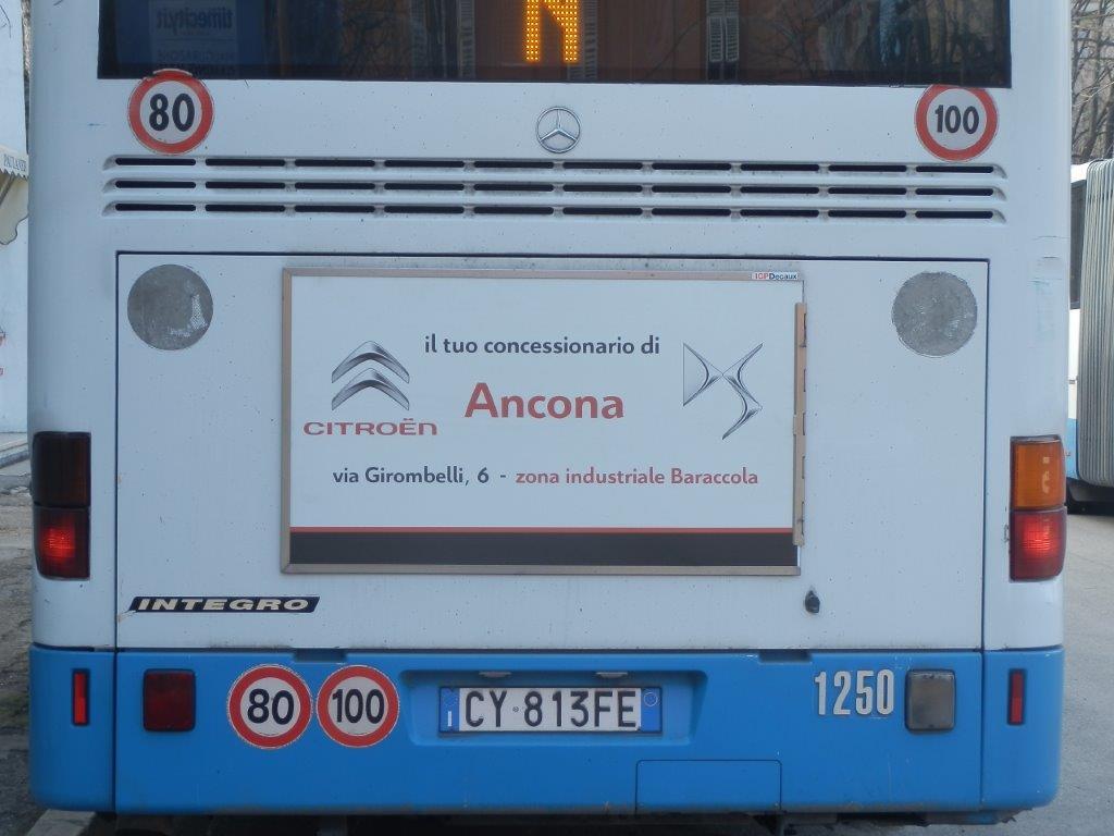 tabella bus 120x70 circondario ancona