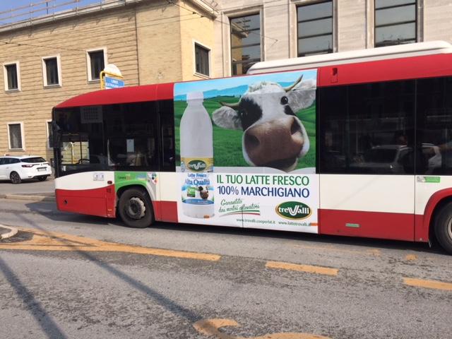 pubblicità negli autobus con adesive