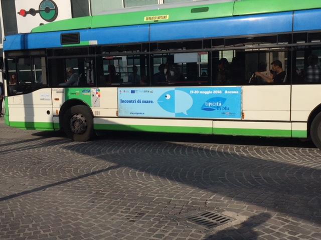 pubblicità negli autobus ad ancona
