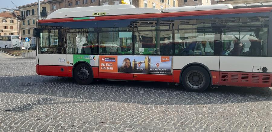 aerdorica pianifica gli autobus con libenzi pubblicità