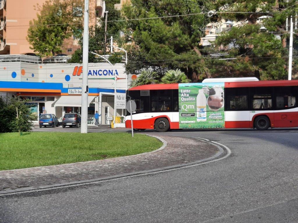 adesive negli autobus in area marche