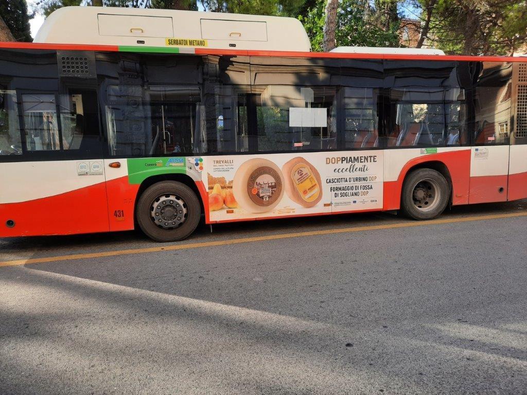 libenzi per cartelloni nei bus