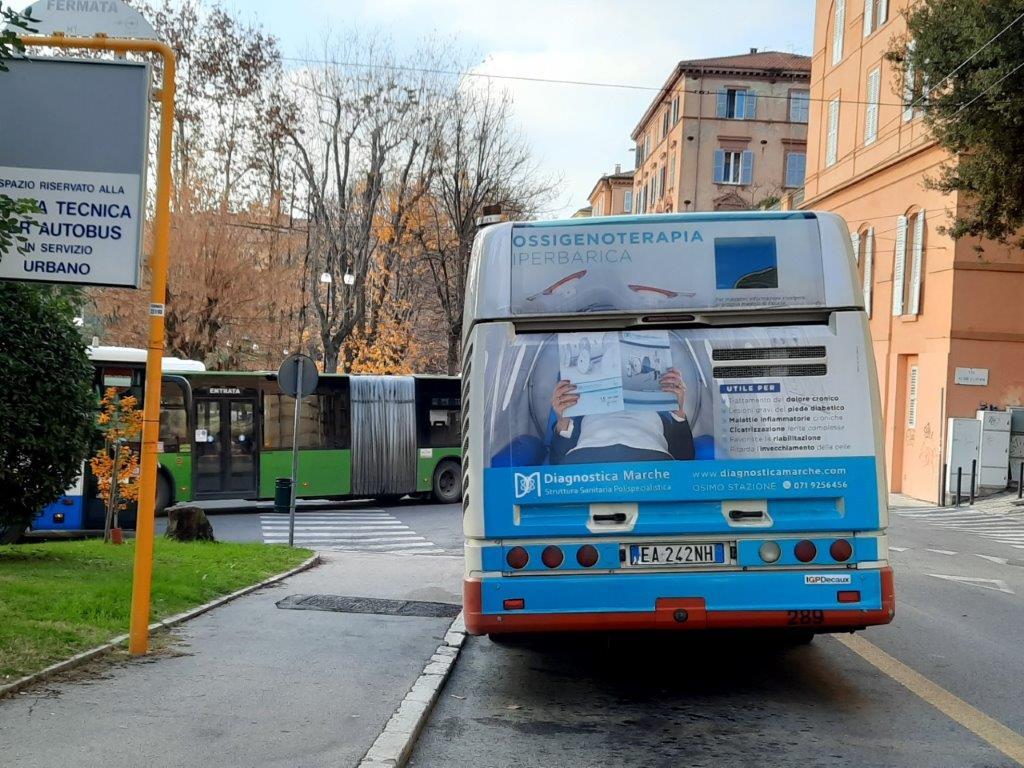 affissioni nei bus delle Marche